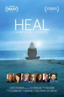 Heal Netflix